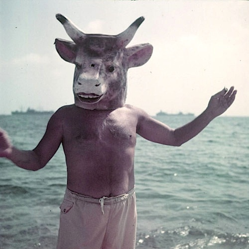 Greatest EPPH | Picasso's Bull's Head (1942) ZL72