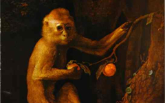 Stubbs' Green Monkey (c.1774-5)