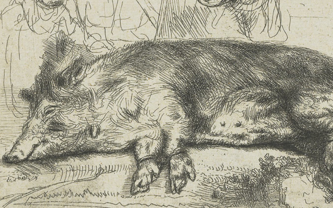 Rembrandt's The Hog (1643)