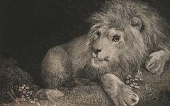 Stubbs' A Lion (1788)