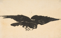 Manet's Flying Raven (1875)