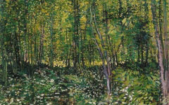 Van Gogh's Trees and Undergrowth (1887)